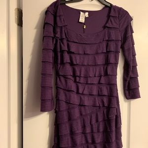 Dresses & Skirts - Sophia Max  Dark purple ruffle dress